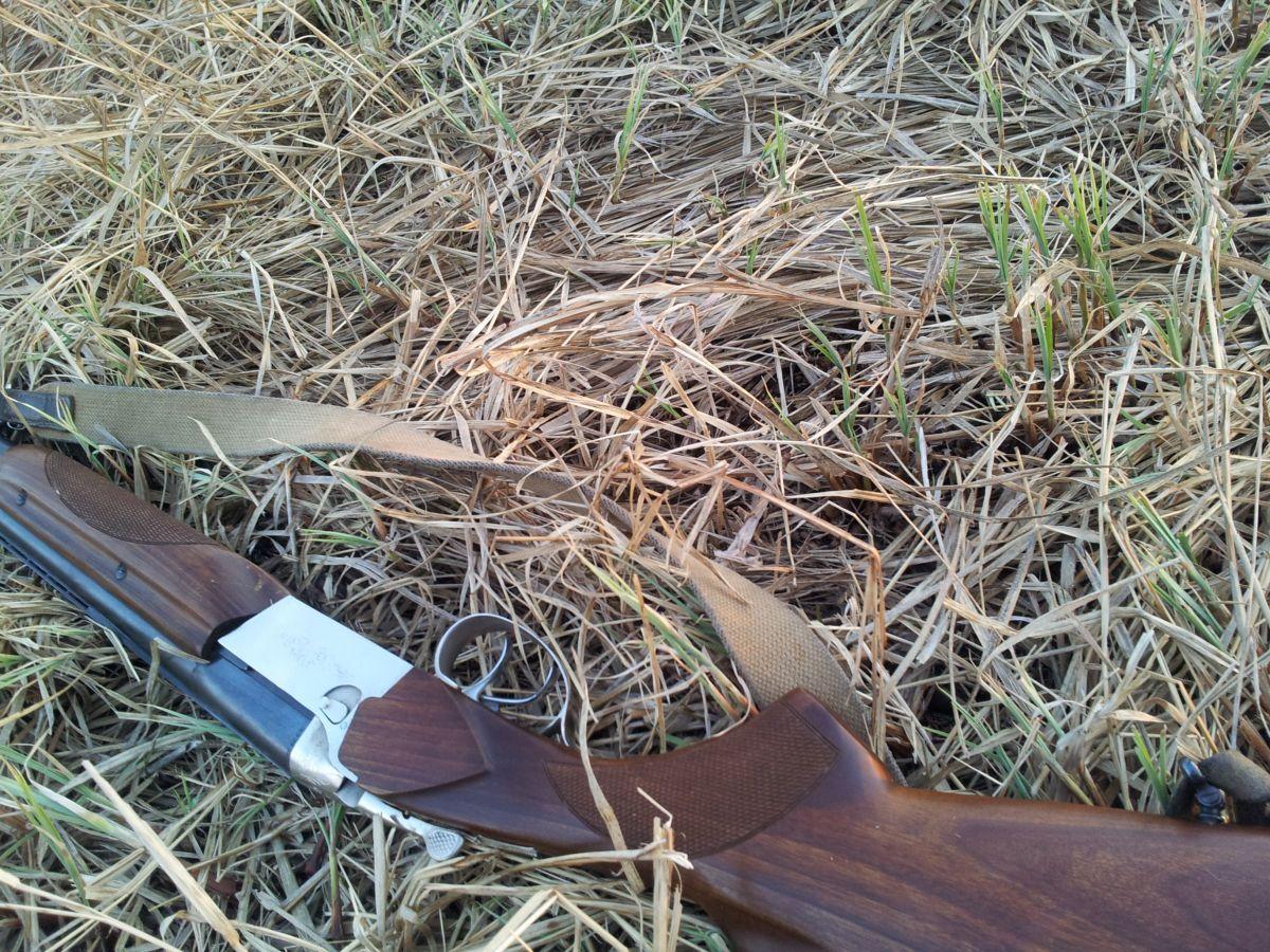 Гладкоствольное ружье ТОЗ ТОЗ-34  ЕР, фото 1634582308.jpg